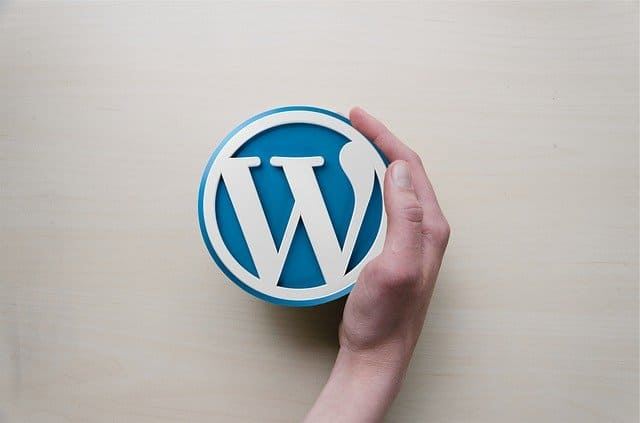 freelance wordpress